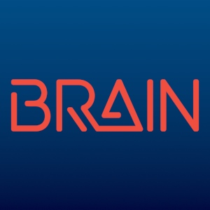 BRAIN Customer Intelligence System